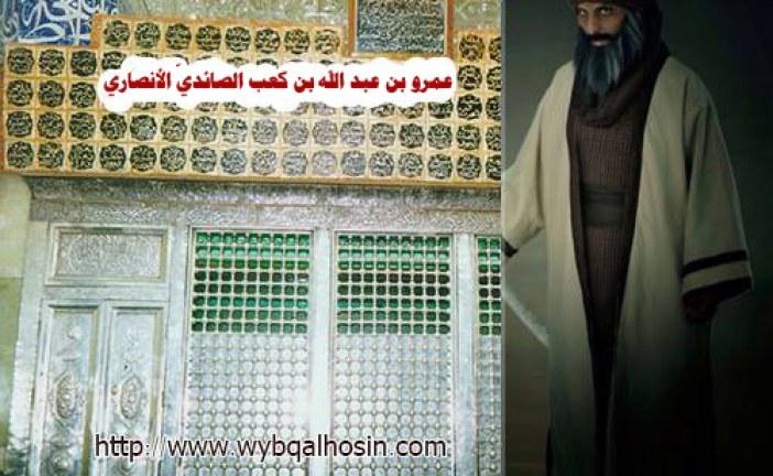 عمرو بن عبد الله بن كعب الصائديّ الأنصاري